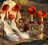 White shoes for wedding Royalty Free Stock Photos