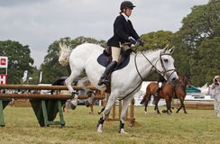 White show jumping horse Royalty Free Stock Photo