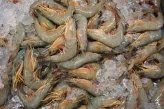 White shrimp Royalty Free Stock Images