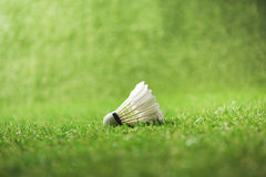 White shuttlecock for badminton on green grass. Close-up view of white shuttlecock for badminton on green grass stock photography