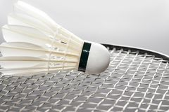 White shuttlecock on the racket Royalty Free Stock Image