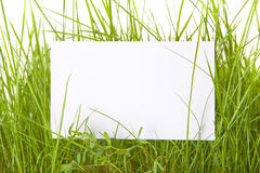 White Sign Amongst Grass Royalty Free Stock Photo