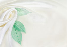 White silk with green leaves Stock Image