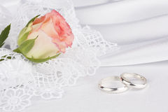 White silk with a lace and rose Royalty Free Stock Image
