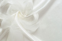 Silk and feathers Royalty Free Stock Photo