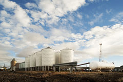 White silos carrying grain Royalty Free Stock Photography