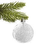 White silver Christmas ball, hanging from a pine tree branch Stock Image