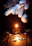 White and silver Xmas decorations Royalty Free Stock Photography