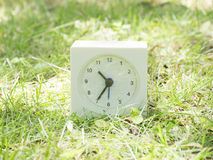White simple clock on lawn yard, 10:35 ten thirty five Stock Images