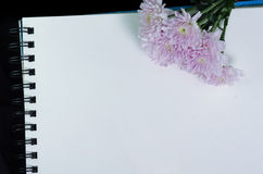 A white sketchbook and pink flower. On black cloth Stock Images