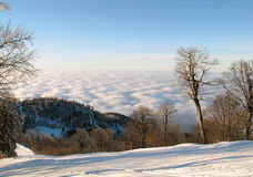 White ski slope above puffy clouds. White ski slope in a mountain forest with pine trees and bare deciduous trees above white and pink puffy cumulus clouds under Stock Photo