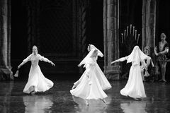 White skirt-The prince of bar mitzvah-The third act-ballet Swan Lake royalty free stock photos