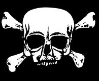 White skull on black Stock Images