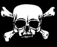 White skull on black Stock Images