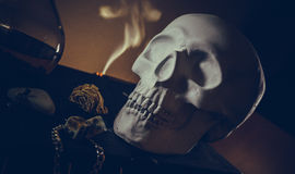 White skull in mystical attributes Stock Images