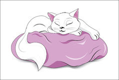 White sleeping cat Stock Photography