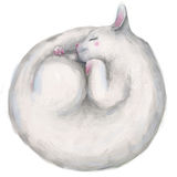 White sleeping cute cat Stock Photography