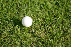 White small ball royalty free stock photography