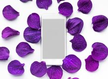 White smartphone with flower petal.flat lay design background stock photo