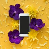 White smartphone with flower petal.flat lay design background royalty free stock photo