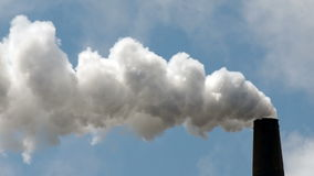 White smoke billows out of an industrial paper-mill stack day in and day out stock video footage