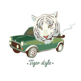 White smoking Tiger Royalty Free Stock Images