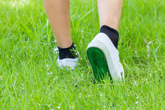 White Sneaker With Step On Grassland Stock Photography