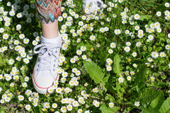 White sneakers in a dasiy field. woman walking. On grass royalty free stock images