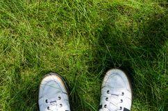 White Sneakers on a Green Grass Top View. A view from the first person under the feet to the fresh green grass. Walking on the grass concept Stock Images