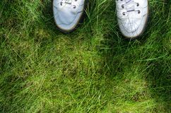 White Sneakers on a Green Grass Top View. A view from the first person under the feet to the fresh green grass. Walking on the grass concept Stock Photography
