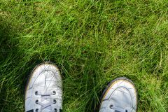 White Sneakers on a Green Grass Top View. A view from the first person under the feet to the fresh green grass. Walking on the grass concept Royalty Free Stock Images