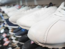 White sneakers on the shelves. White sneakers on the shelves Royalty Free Stock Photos