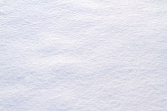 White Snow as background. Stock Images