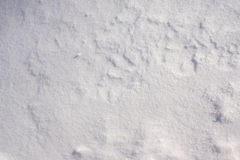 White Snow Background. Close up photo of snow in winter Royalty Free Stock Image