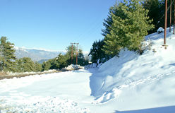 White snow carpet under sunlight. In Patnitop, North India, in winters Stock Photos