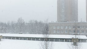 White snow is falling slowly from the sky stock footage