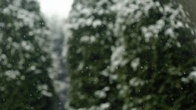 White snow falling during winter day.Background with snowflakes blizzard and blurred woods forest.Seasonal nature. Outdoor weather event.slow motion video stock video footage