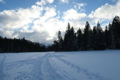 The White Snow in the lonely Meadow Royalty Free Stock Photography