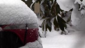 White snow sitting on red tail lamps of red car. In winter stock video footage