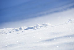 White Snow On A Sunny Day Royalty Free Stock Photo