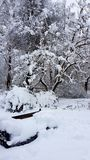 White snow. Winter park cold royalty free stock photography