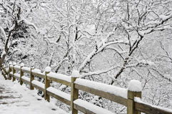 White snow on woody fence Stock Images
