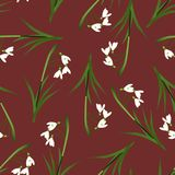 White Snowdrop Seamless on Red Background. Vector Illustration.  Royalty Free Stock Images