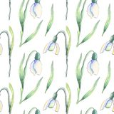 White snowdrops pattern vector illustration