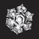 White snowflake on black background Royalty Free Stock Photos