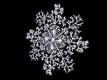 White snowflake close up. Close up of white snowflake on black background Royalty Free Stock Photography