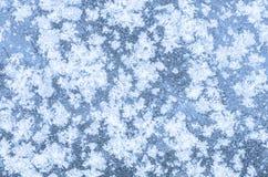 White snowflakes on ice Stock Image