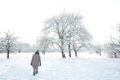 Snow landscape field trees Woman walking Stock Photo