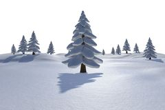 White snowy landscape with fir trees. On white background Royalty Free Stock Photography