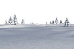 White snowy landscape with fir trees. On white background Stock Image